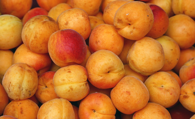 Sweet fresh apricots background, close up Abundance Apricot Apricots Backgrounds Close-up Day Food Food And Drink For Sale Freshness Fruit Fruits Full Frame Healthy Eating Large Group Of Objects Market Market No People Outdoors Red Retail  Retail Display Summertime Vegetarian Food Yellow
