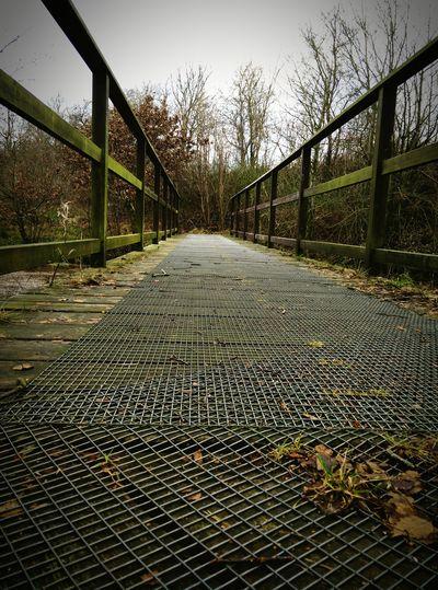 Bridges Bridgeporn Antsveiw