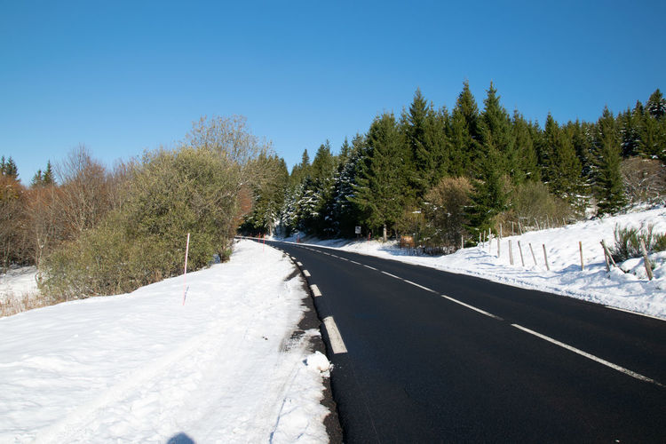 Road amidst snow covered trees against clear sky