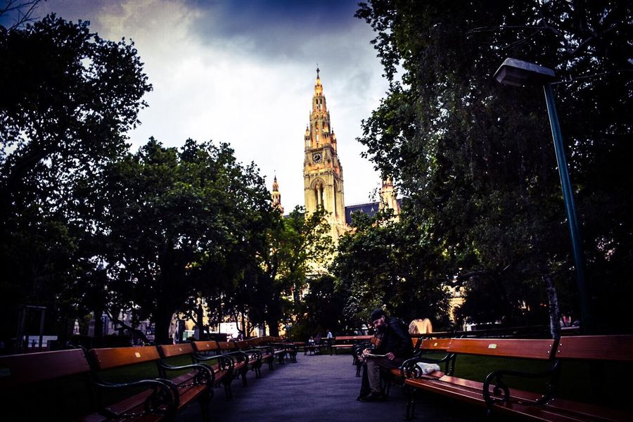 Wiener Rathaus Wien Tree Plant Architecture Built Structure Building Exterior Nature Building Sky Direction Transportation City The Way Forward Tower Belief Spirituality Footpath Growth Religion Place Of Worship No People