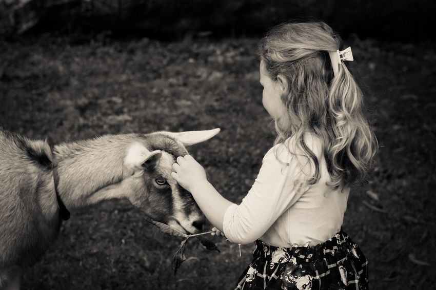 Sometimes love really is that uncomplicated. Girl Goat Love ♥ Monochrome Blackandwhite Taking Photos Photography Is My Escape From Reality! Kids Being Kids Animals EyeEm Masterclass EyeEm Best Edits EyeEm Gallery Perfection Is Always Frowned Upon Fortheloveofblackandwhite Showcase: February From My Point Of View People Kidsphotography