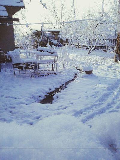Snow Cold Cold Winter ❄⛄ Love Winter