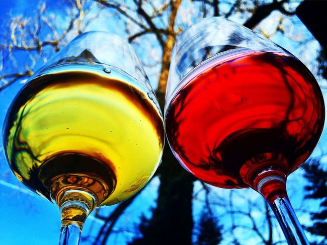 Alcohol Blue Low Angle View Nature Outdoors Red Red Wine Sky White Wine Wine