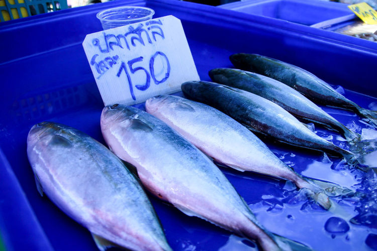 Food And Drink Food Freshness Retail  Fish Market Seafood Wellbeing Healthy Eating Vertebrate High Angle View For Sale No People Animal Close-up Still Life Raw Food Blue Container Text Outdoors
