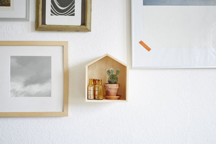 Potted plant on wall at home