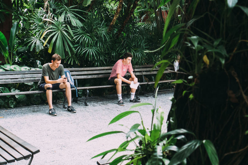 People sitting by plants against trees