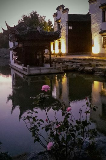 Architecture Built Structure Reflection Outdoors Night Sky History China Culture China In My Eyes Beauty In Nature Outdoor Pictures Outdoorshot China Photos China View Rose🌹 Parkscapes Teahouse Rose - Flower Tree Nature Flower