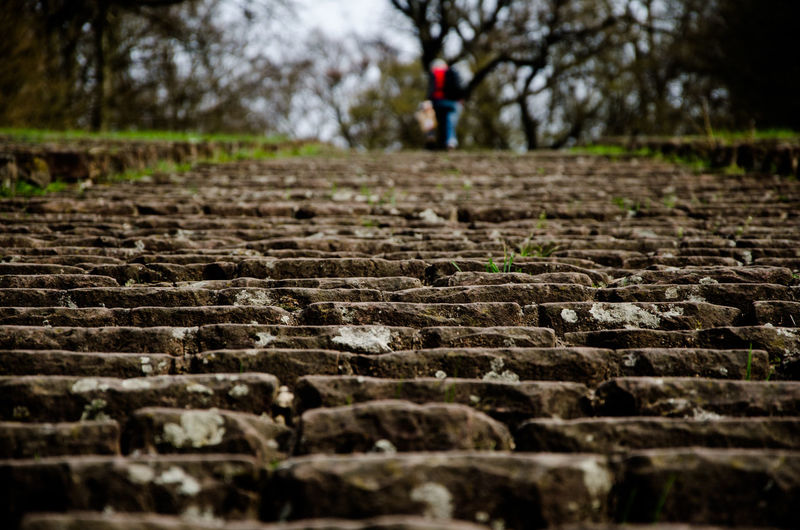 Stairs Thingstätte Architecture Day Diminishing Perspective Direction Focus On Foreground Footpath Growth Land Nature One Person Outdoors Park Real People Selective Focus Sichtmanufaktur Solid Surface Level The Way Forward