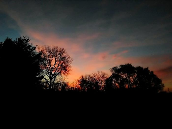 Tree Silhouette Nature Sky Beauty In Nature No People Scenics Landscape Outdoors Tranquil Scene Tranquility Beauty In Nature Nature Silhouette Vivid Sunrise Photography Fall Beauty EyeEm Best Shots - Landscape EyeEm Best Shots Cloudscape EyeEm Gallery Sunrise_Collection EyeEm Best Shots - Nature Perspective Cloud - Sky