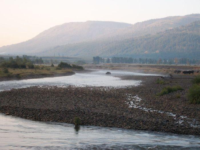 River crossing,