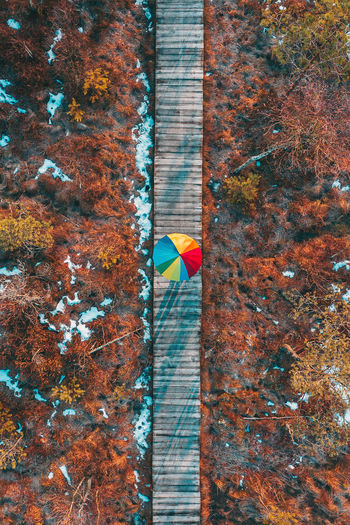 Diversity Kaunas Lithuania Lietuva Drone  Aerial Aerial View Mavic 2 Mavic 2 Pro Birds Eye View DJI X Eyeem Winter Wintertime Diversity Umbrella Rainbow Umbrella Rainbow🌈 Walkpath Wood Walkway Wood Top Down View Color Day No People Nature Architecture Outdoors Multi Colored Built Structure Plant Wood - Material Tree Wall - Building Feature Yellow Wall Pattern Textured  Metal Red Change
