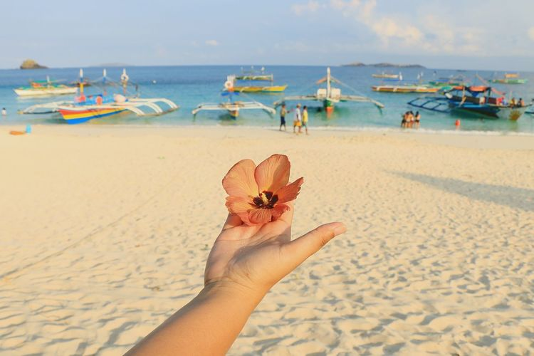 Cropped Image Of Person Holding Orange Flower On Sea Shore