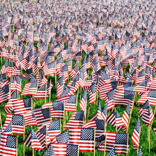 Full Frame Shot Of American Flags At Cemetery