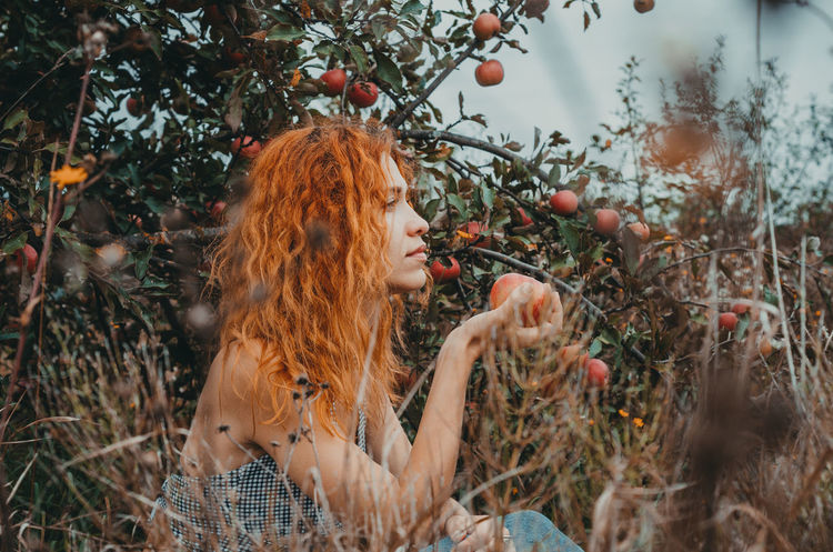 Girl in apple garden Apple Adult Apple Tree Beautiful Woman Blond Hair Food Food And Drink Hair Hairstyle Leisure Activity Lifestyles Long Hair Looking Nature One Person Outdoors Plant Real People Redhead Tree Women Young Adult Young Women
