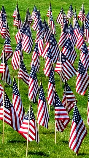 High angle view of american flags on grass