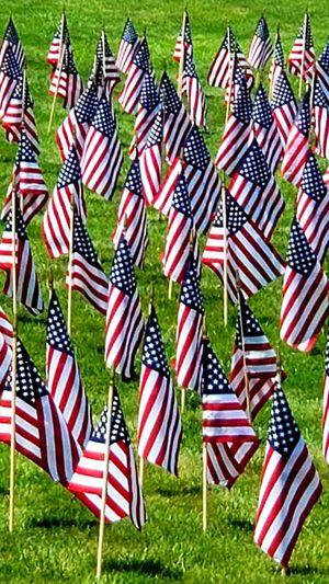 patriot Stars And Stripes Army Soldier Patriotism Celebration Pride Flag Cultures Memorial