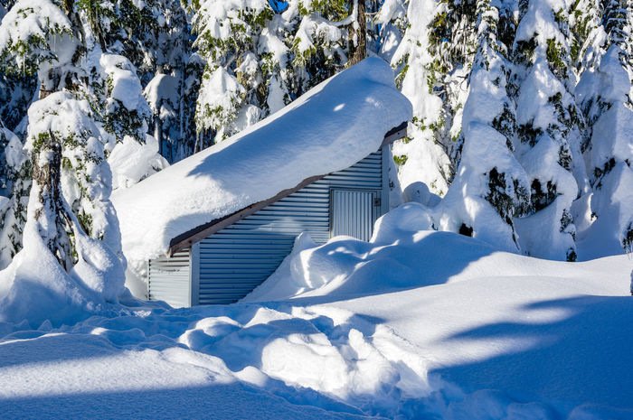 Snow Shed at Battleship Lake Beauty In Nature Cold Temperature Day Nature No People Outdoors Paradise Meadows Sky Snow Strathcona Provincial Park Tranquility Tree Winter