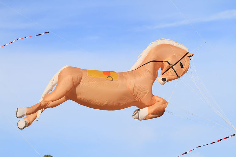 Low angle view of horse shape kite flying in sky