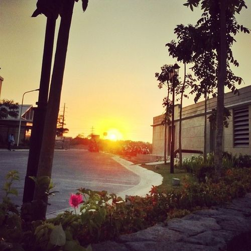 Afternoon Sunset