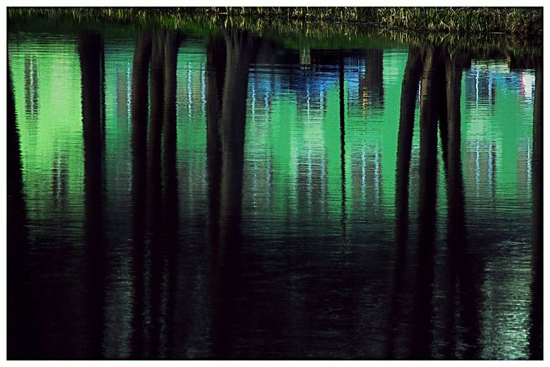 Sweden The True Story Green Backgrounds Close-up Green Color Lake Lakeshore