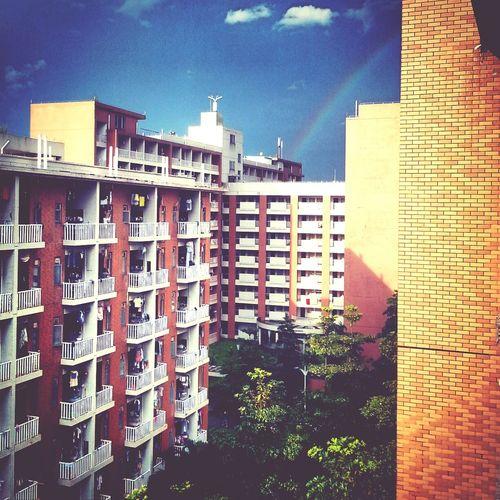 Rainbow Gdfus
