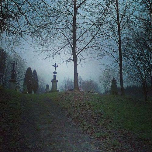 Цвинтар в селі Мшана Dark graveyard night Gothic