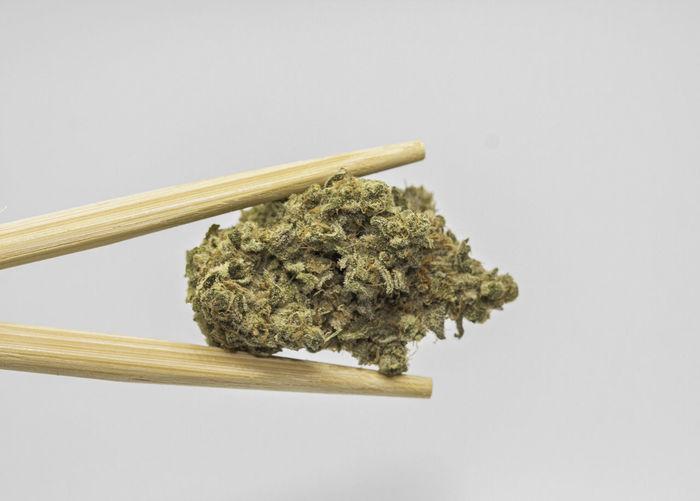 420 420 Photography 420life Cannabis Chopsticks Dispensary Drugs Marijuana MMJ Smoke Smoke Weed SMOKE WEED EVERYDAY Weed Weed Life Weed Marijuana