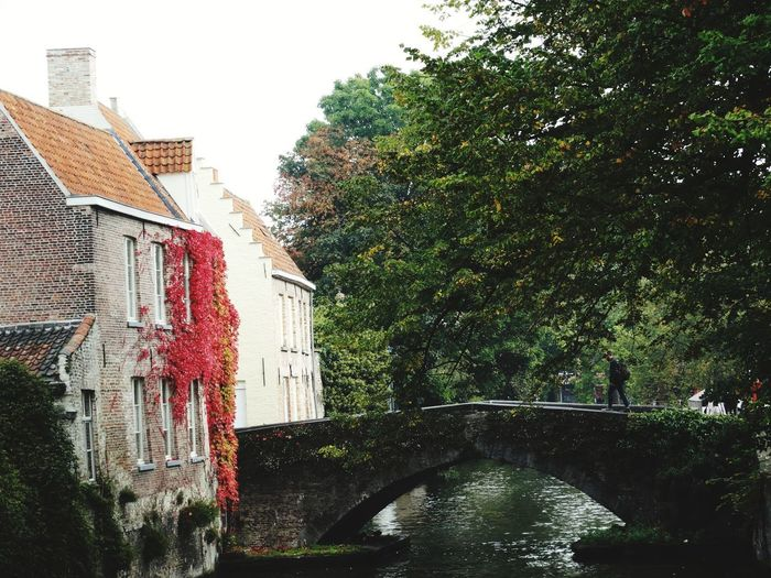 Architecture Water Built Structure Building Exterior Tree Day Outdoors No People Growth Sky Nature Belgium Flamand Architecture Vacations Canal Brugge Autumn In Brugge Brugge, Belgium Travel Destinations Autumn Colors