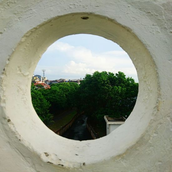 Situ Gintung, 2017 Tree Growth Window Architecture Sky Plant Building Exterior Social Issues Cloud - Sky No People Nature Day Greenhouse Outdoors Beauty In Nature City Scenics Landscape Waterfront