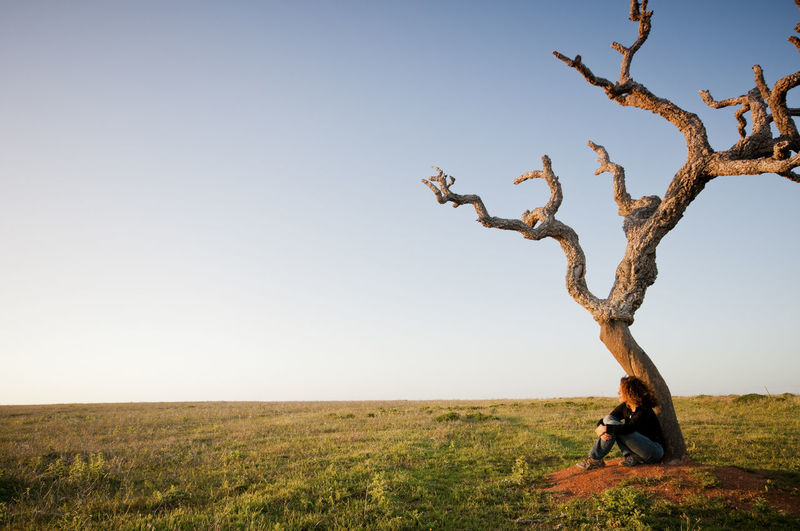 Woman Sitting By Bare Tree Against Clear Sky