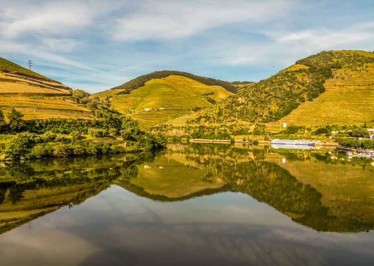 Douro Valley Duoro River Greenery Scenery Hillside Nature_collection Reflections In The Water Sky Wine Area