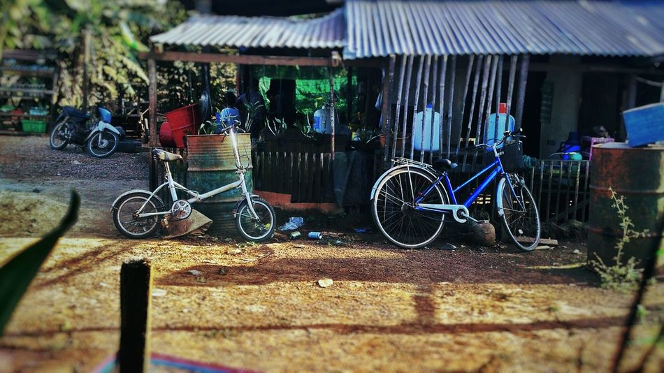 Bike Week Family Ride Rural Scenes Celebrate Your Ride The Street Photographer - 2016 EyeEm Awards Two Is Better Than One Feel The Jouney
