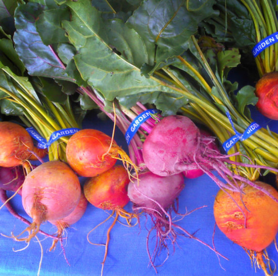 Colorful beets at the farmers market Community Supported Agriculture Csa Farmers Market Small Farm  Beet Beets Close-up Colorful Food Food And Drink Freshness Healthy Eating No People Organic Plant Part Root Vegetable Still Life Vegetable Wellbeing