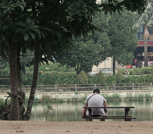 A man on bench at the park in the middle of busy city People And Places Tree Sitting Rear View Relaxation Bench Park - Man Made Space Men Lifestyles Park Bench Leisure Activity Full Length Water Person Day Vacations Tranquil Scene Thinking About Life Lake Togetherness Solitude Urbanpark