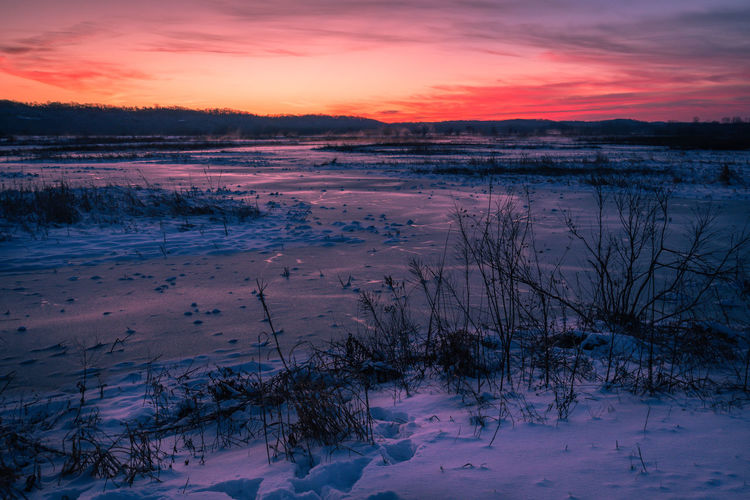 Winter Sunset Cold Temperature Snow Sky Beauty In Nature Tranquility Tranquil Scene Scenics - Nature Cloud - Sky Environment Nature No People Water Plant Tree Frozen Non-urban Scene Covering Outdoors