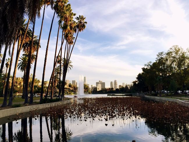 Echo Park  Enjoying Life Taking Photos California OpenEdit Hello World