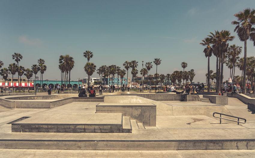 Venice beach skatepark, Los Angeles Venice Beach Venice Beach Skatepark California Los Angeles, California Noir Film Vscocam VSCO People Palm Trees Blue Sky Sunshine Skateboarding Skateboard Real People Street Life Street Photography Urban Skyline Moody Sky