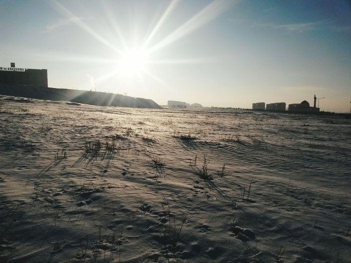 Sun Winter Cold Erzurum AtatürkÜniversitesi Beatiuful Nature Naturel Güzel bir kış gününde güneşin şehre veda edişi.