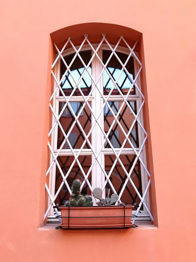 Low angle view of window on building with terracotta wall