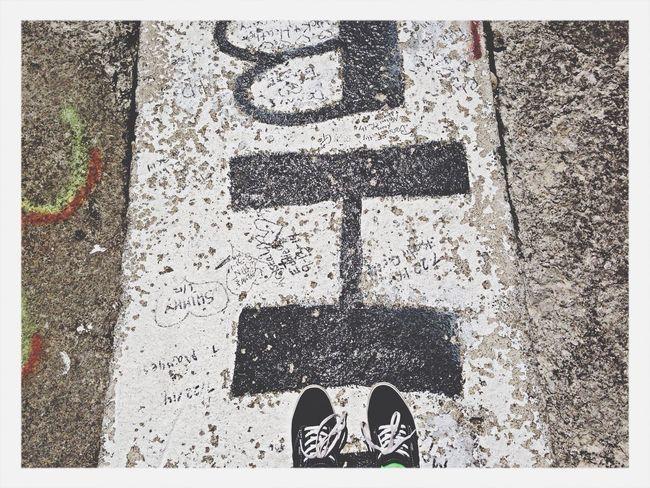 Floortraits Put In Bay Pib