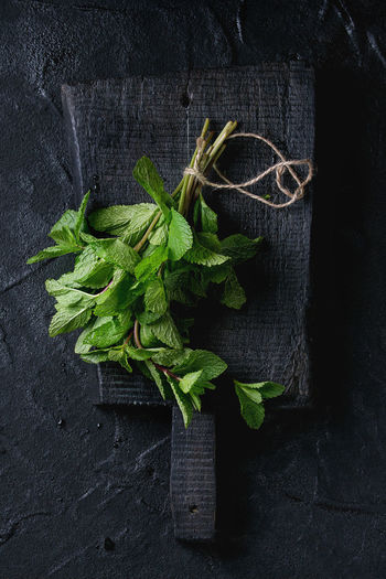 Bunch of fresh mint with thread on black wooden chopping board over black textured background. Top view Leaf Plant Part Freshness Mint Food And Drink Food Herbs Wood - Material Table High Angle View Dark Chopping Board Black Mint Leaf - Culinary Herb Green Color Directly Above Healthy Eating