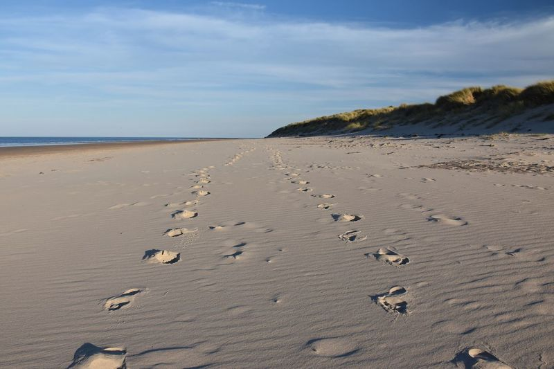 Footsteps in the sand on Bamburgh Beach Land Sand Beach Sky Tranquility Scenics - Nature Beauty In Nature Tranquil Scene Sea Nature Water Day Non-urban Scene Cloud - Sky No People Horizon Remote FootPrint Idyllic Horizon Over Water Arid Climate Sandy Beach Dune Dunes Sand Dune Coastline Coast Seascape Seaside Blue Sky The Traveler - 2019 EyeEm Awards The Great Outdoors - 2019 EyeEm Awards