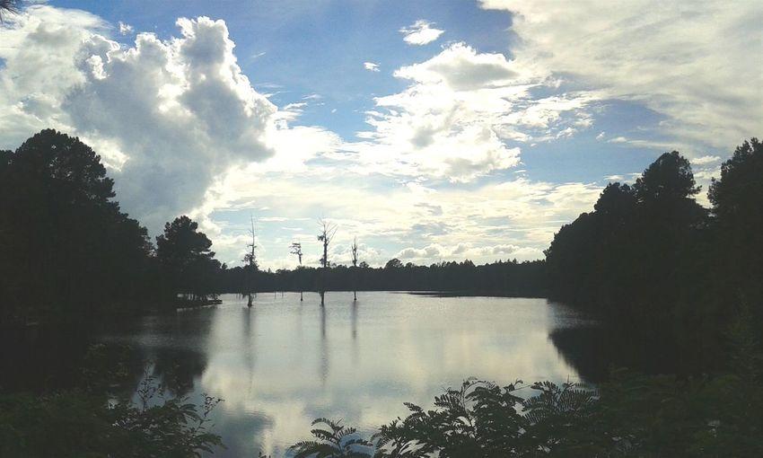 Satilla River Satillariver