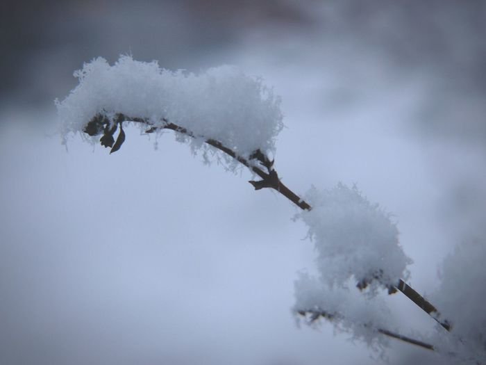 It was snowing today :) Snow Winter White Finland