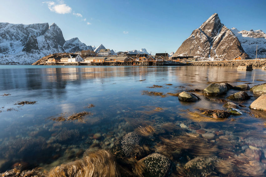 Sakrisøy by the water Norway Sakrisøy Winter Beauty In Nature Day Idyllic Landscape Lofoten Nature No People Non-urban Scene Outdoors Rock Rock - Object Rock Formation Rorbuer Scenics - Nature Sea Solid Tranquil Scene Tranquility Water Waterfront Yellow Houses