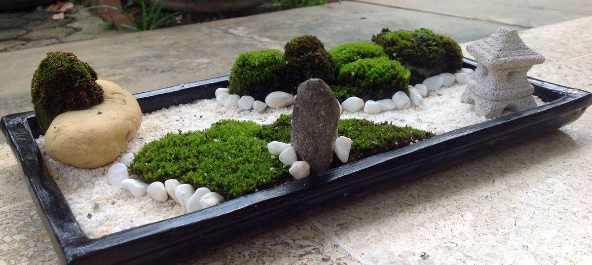 zen of moss, DIY Mini Zen Garden Miniature Zen Garden