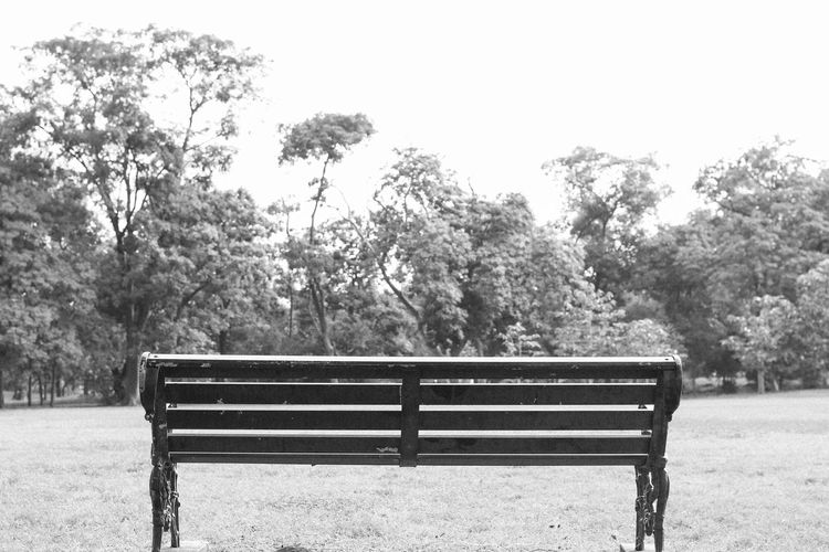 Bench Black And
