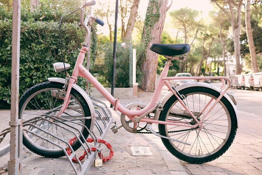 Pink Bicycle Bicycle Basket Bicycle Rack City Closed Day Land Vehicle Lock Mode Of Transport Nature No People Outdoors Parking Pedal Pink Color Rosé Safe Safety Spoke Stationary Tire Transportation Tree Wheel