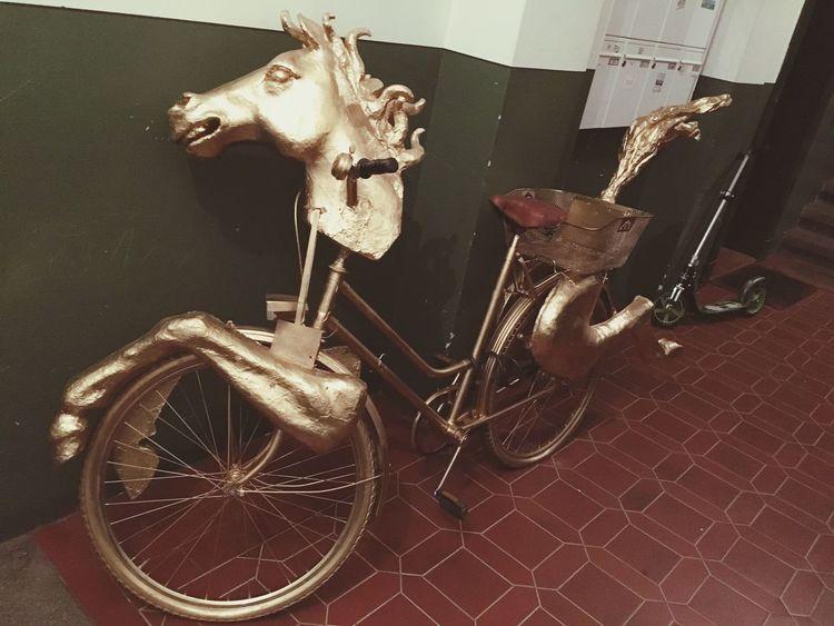 Dresden Fahrrad Bicycle Goldene Reiter Gülden Horse
