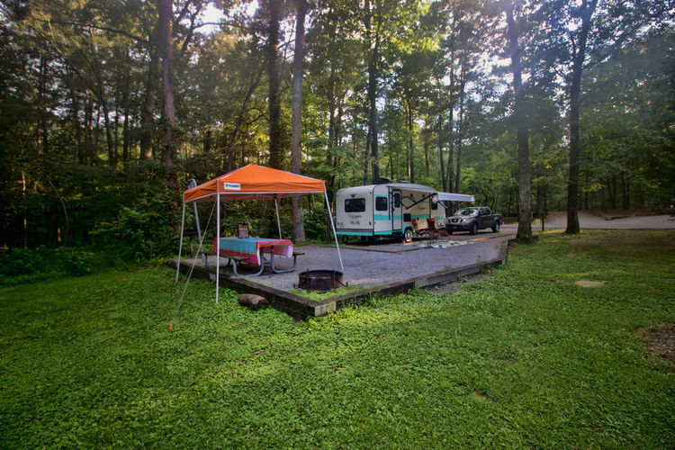 Campsite Wide angle View Campsite Camper Camping Day Forest Grass Green Color Growth Land Land Vehicle Mode Of Transportation Nature No People Outdoors Rv Transportation Travel Tree Wide Angle WoodLand Woods